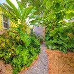 2207 Flagler Avenue tropical landscaping